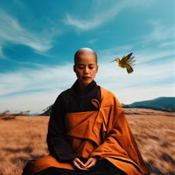 freetoedit eternity monk hummingbird meditation