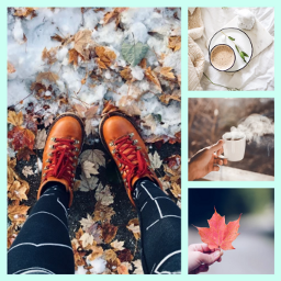freetoedit holis ccautumnmoodboard autumnmoodboard moodboard autumn collage