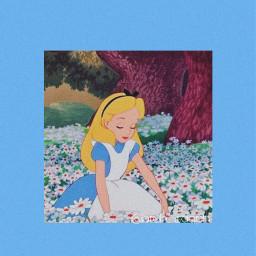 aliceinwonderland alice wonderland blue