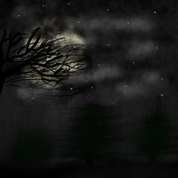 freetoedit forest night draw xd dcnightforest nightforest