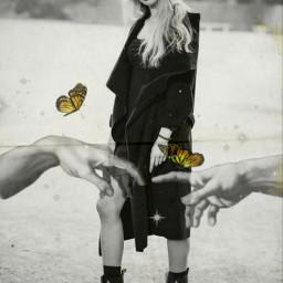 freetoedit model filter butterfly