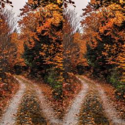 freetoedit ccautumnmoodboard autumnmoodboard moodboard collagehttps
