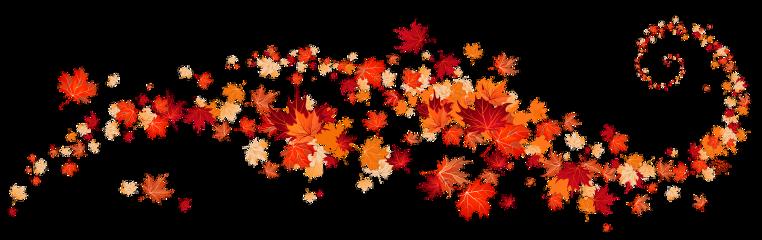 fall fallleaf leaf leaves freetoedit