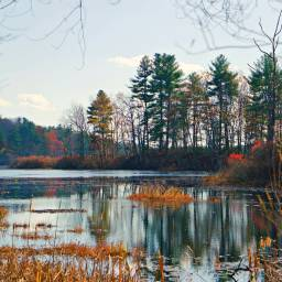 freetoedit naturphotography reflections lake
