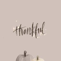 fcthanksgiving thanksgiving