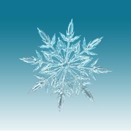 freetoedit snow snowflake cold freezing