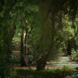 forest magicforest oilpaintingeffect ilumination surrealism