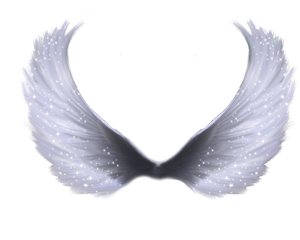 challenge sticker grey wings angel freetoedit scgray gray