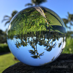 interesting nature paradise maui hawaii