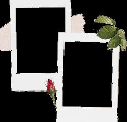 polaroid craft aesthetic editing overlay freetoedit