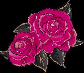 flowers cerise wine roses petals freetoedit