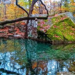 pond colorful vividcolor hdr naturephotography