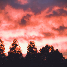 interesting california summer freetoedit photography