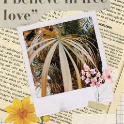 freetoedit aesthetic flower vintage frame