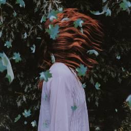 freetoedit leaves wind leaf girl