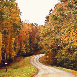 freetoedit thanksgiving nature outdoors road