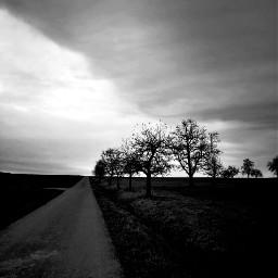 freetoedit blackandwhite landscape pathway vanishingpoint