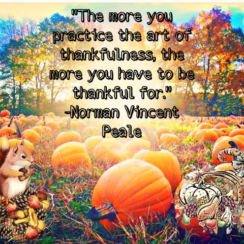 #freetoedit,#fcthanksgiving,#thanksgiving