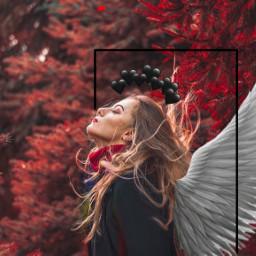 freetoedit hushhush angel patch ircautumnvibes autumnvibes