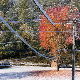 snow leavesontheground