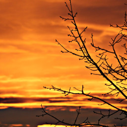 evening sunset orangesky clouds sunlight freetoedit