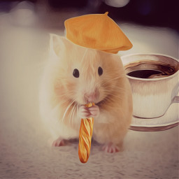 freetoedit hamster hat baguette coffeecup srcfrenchberet frenchberet