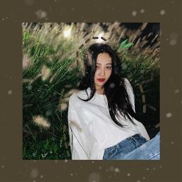 freetoedit icon kpop kpopicon joyredvelvet