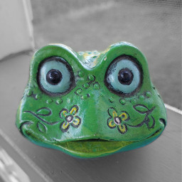 froggybank frog face blackandwhite colorsplash freetoedit