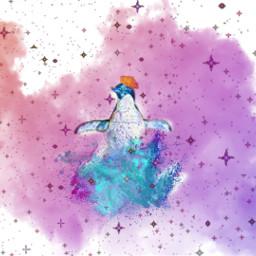 freetoedit pinguin savethepinhuins srcfrenchberet frenchberet