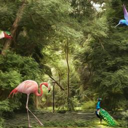 freetoedit magic magicforest surrealart surrealismstyle
