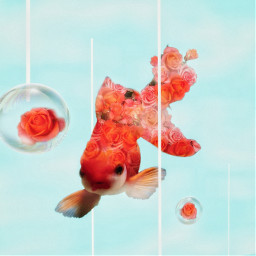 freetoedit fish bubbles flowers sky