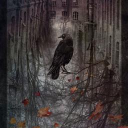 editedbyme november abandoned lostplaces fallenleaves