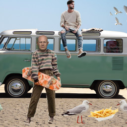 freetoedit van beach seagulls ocean