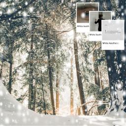 freetoedit snow nature forest light ecaesthetic