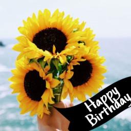 freetoedit happybirthday honeymg444
