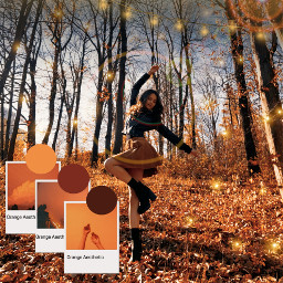 freetoedit fall girl palette orange ecaesthetic aesthetic
