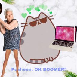 okboomer oldlady pusheen oldladiessuck karen freetoedit