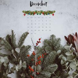 freetoedit christmas calender december cute srcdecembercalendar decembercalendar