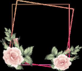 rose square floral frame glitter freetoedit