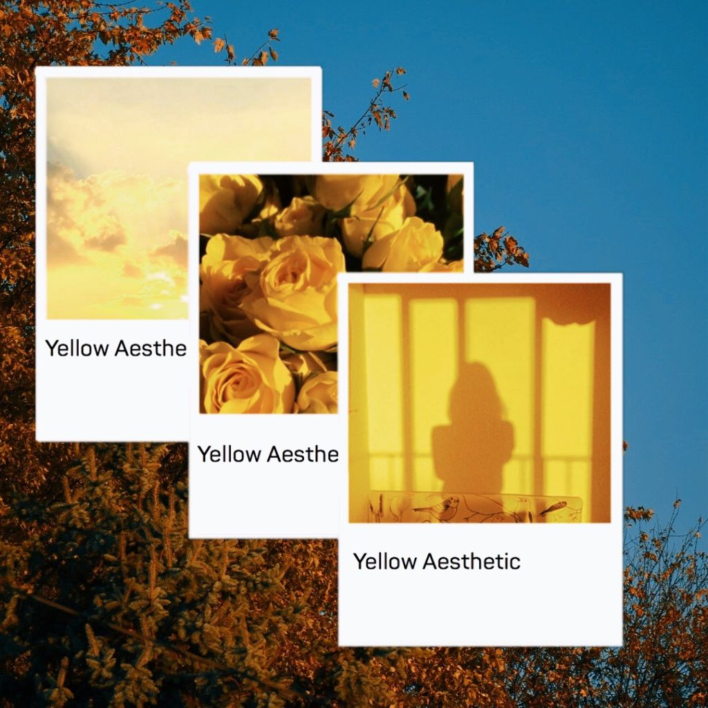 #freetoedit aesthetic #aesthetic #tumblr #instagram #vintage #yellow #summer #autumn #seasons #edit #remix.