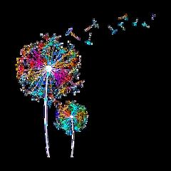 freetoedit rainbow dandelions