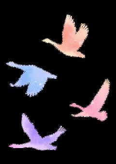 ftestickers watercolor birds flying flock freetoedit