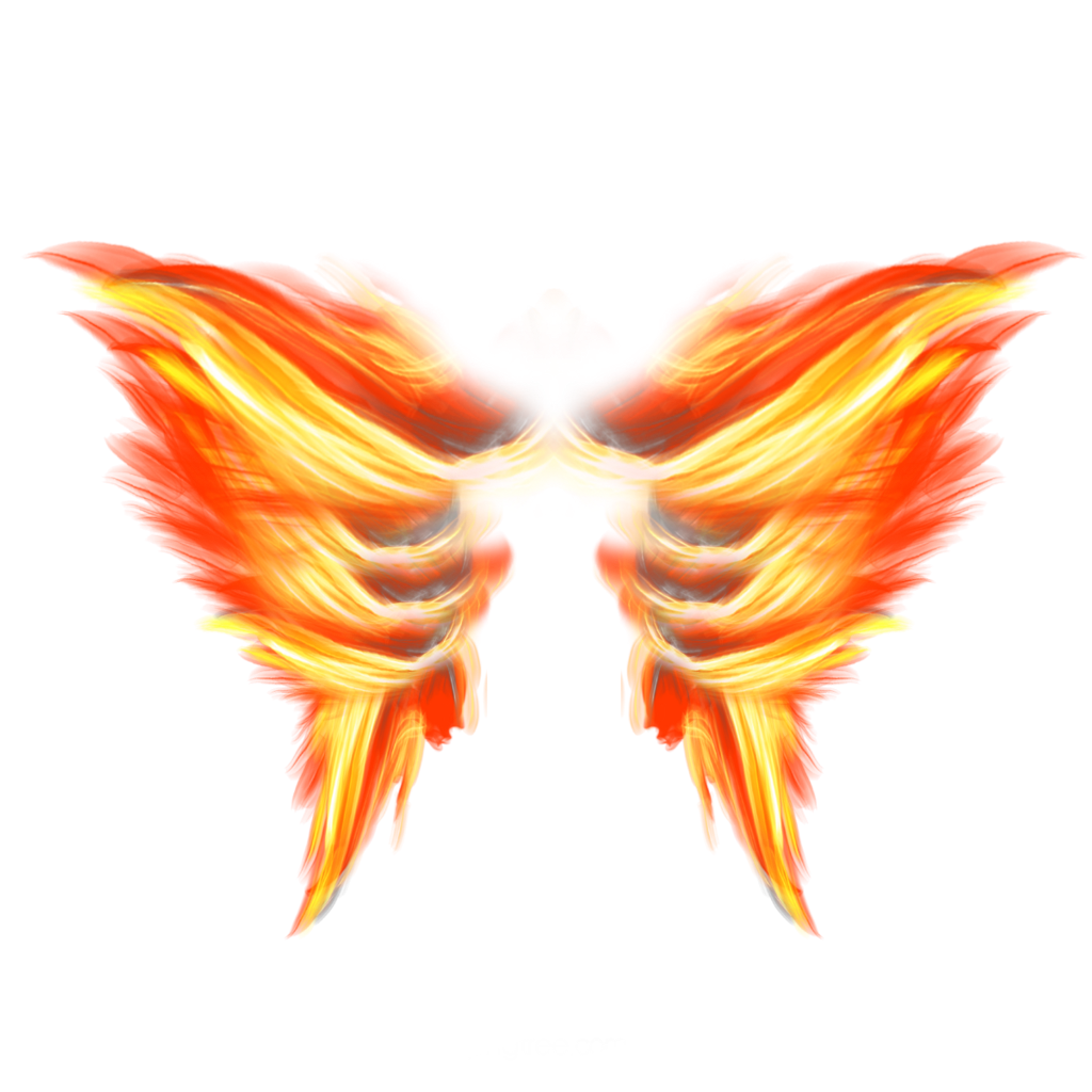 #ftestickers #fantasyart #wings #fire #burning #luminous #glowing