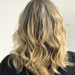 sbelias hair blondie