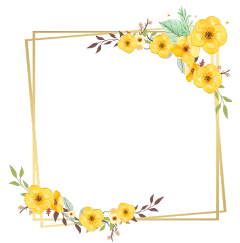 freetoedit daisy square flower floral
