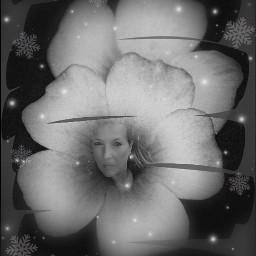 freetoedit madewithpicsart inspiration magic photomanipulation