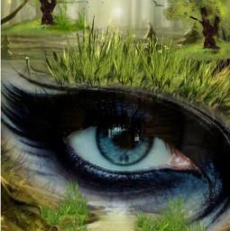 freetoedit @asweetsmile1 eye trees grass