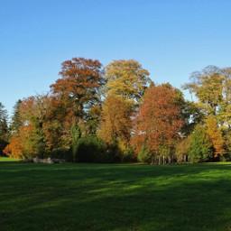 landscape trees autumn autumncolors naturelover freetoedit