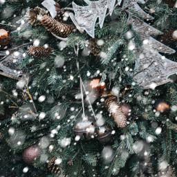 freetoedit snowbrush holiday christmas newyear
