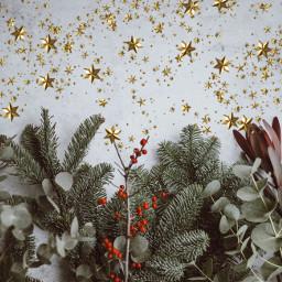 freetoedit holidaystarsbrush remix